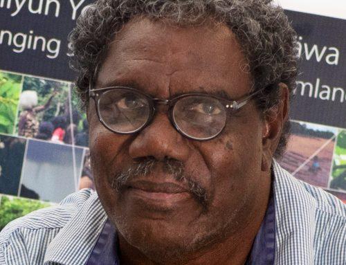 Gawura Wanambi